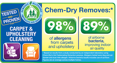 Hampton's Chem-Dry removes 98% of allergens and 89% of bacteria from carpets