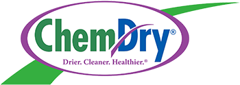 Hampton's Chem-Dry Logo